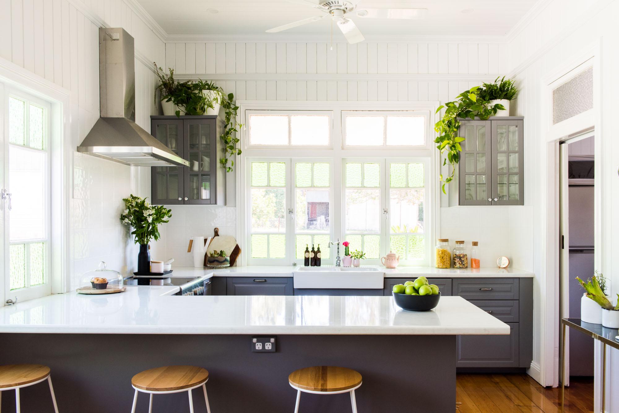 Best Kitchen House Plants Apartment