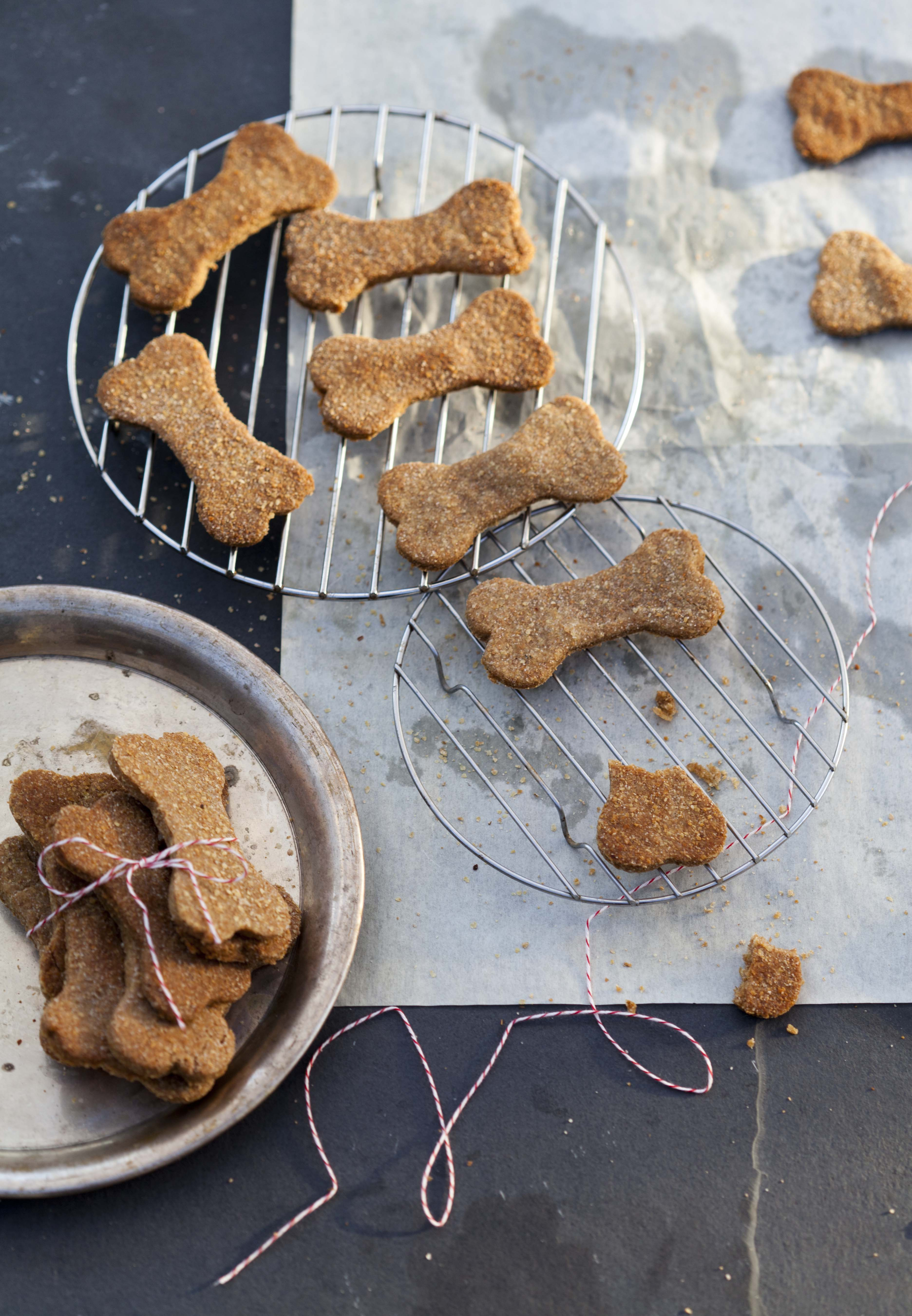 Cookies For Canines: 9 Homemade Dog Treat Recipes | Kitchn
