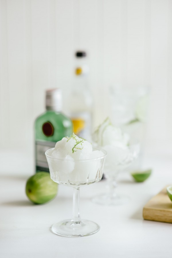 Cool, Clean Dessert: Gin and Tonic Sorbet | Kitchn