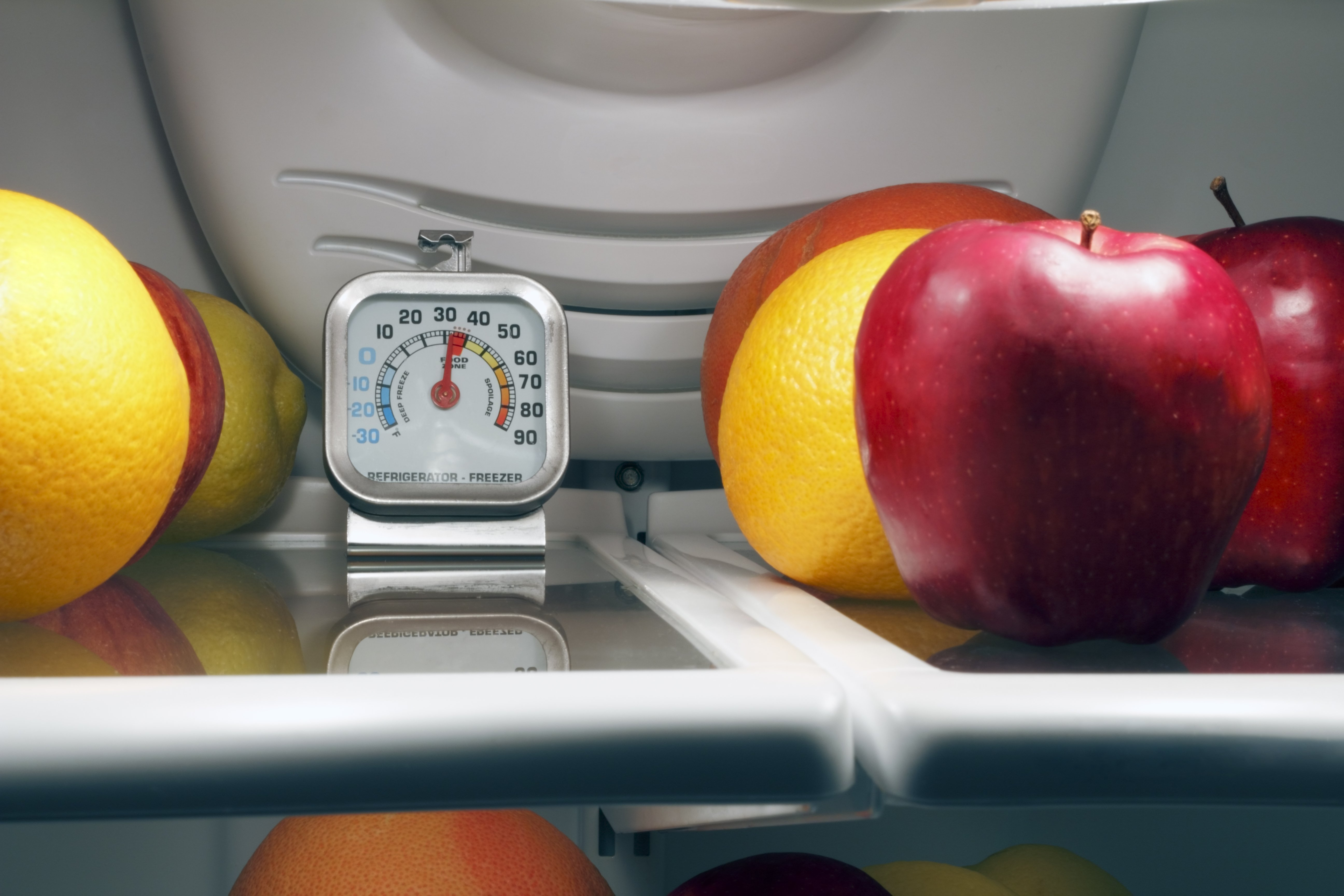 At What Temperature Should My Refrigerator Be Set? | Kitchn