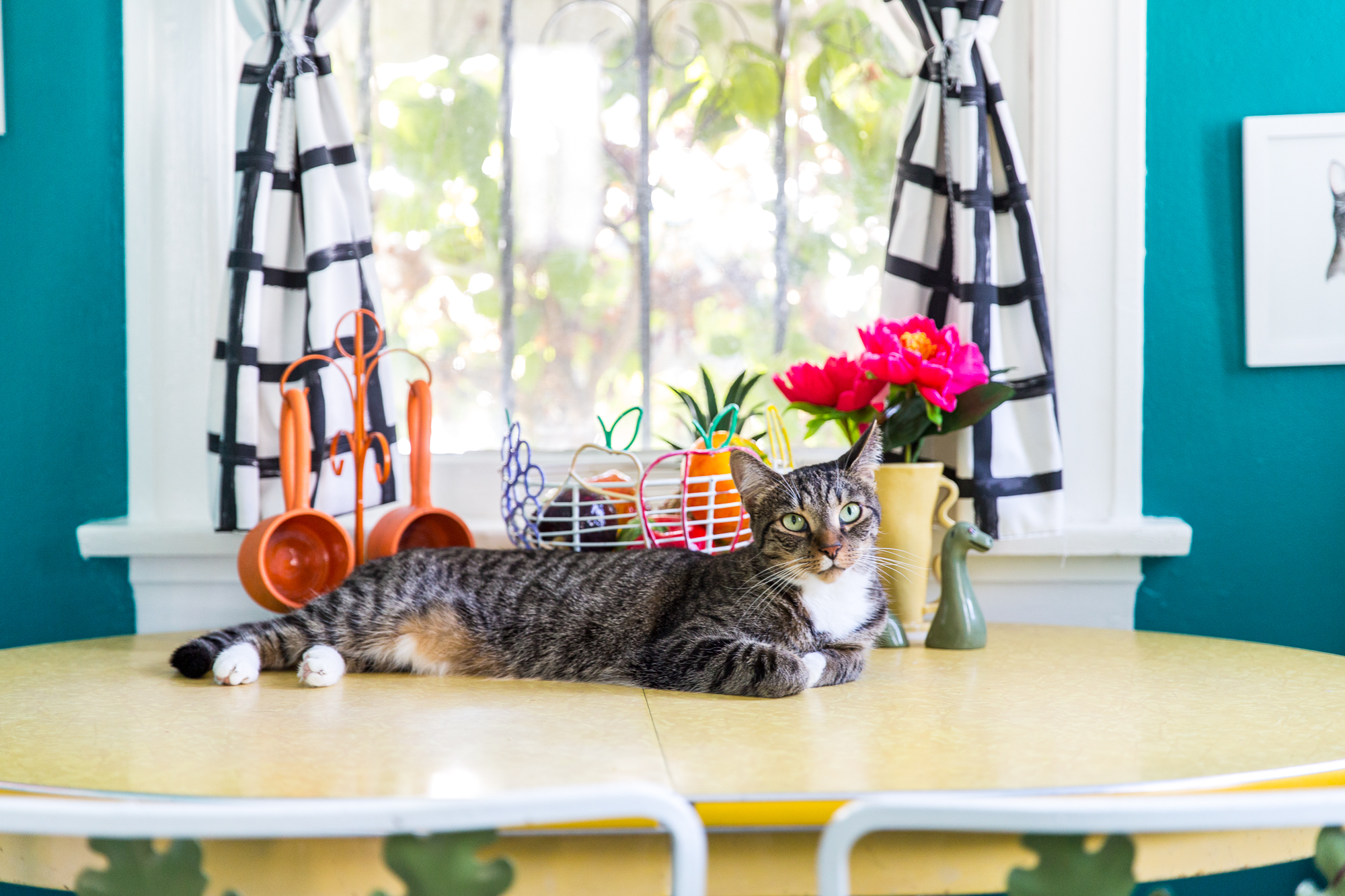 Marvelous Jackson Galaxy On Keeping Your Cats Off The Counters Kitchn Interior Design Ideas Gentotthenellocom