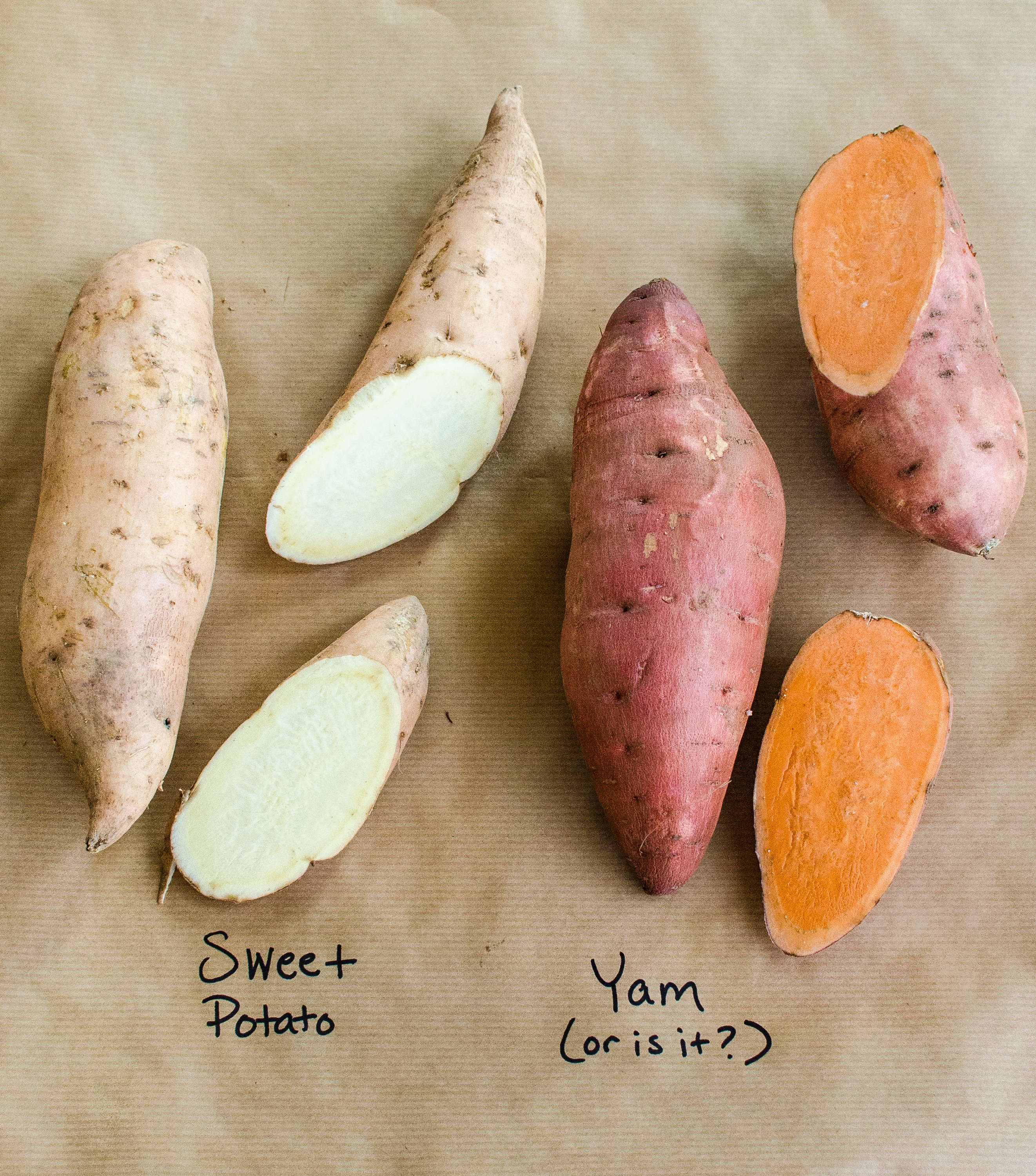 What's the Difference Between Yams and Sweet Potatoes? | Kitchn