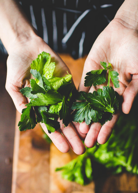 7 Reasons Celery Leaves Deserve Far More Attention | Kitchn
