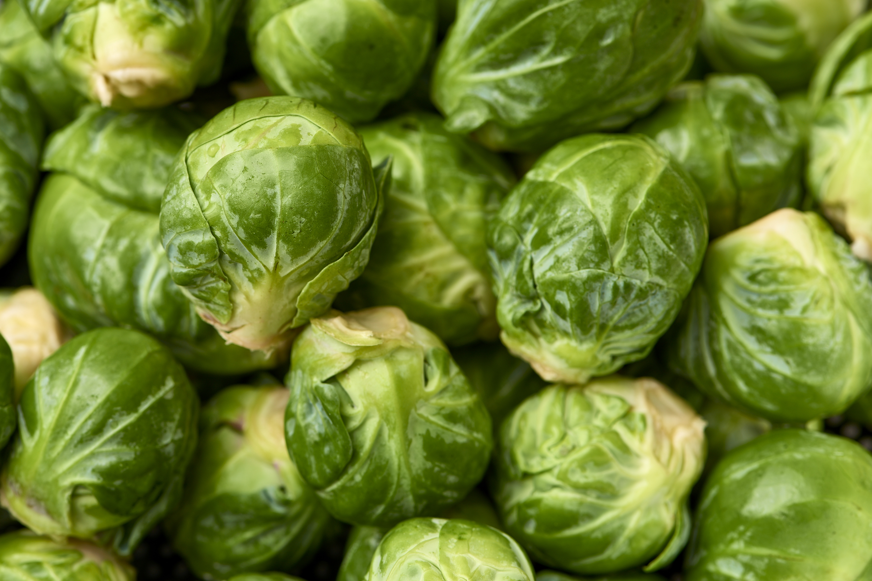 How To Prep Store Brussels Sprouts Kitchn