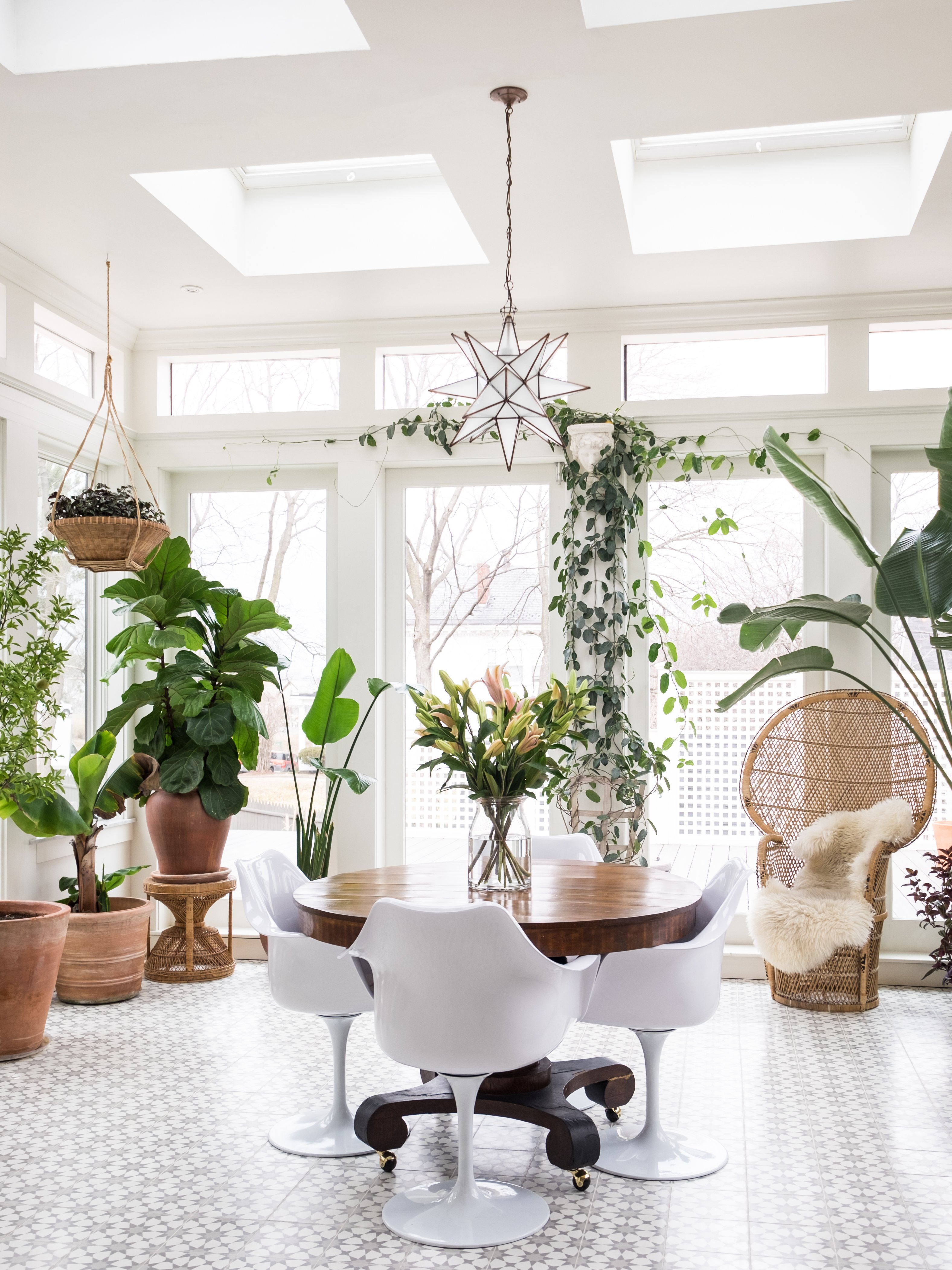 9 Plants You Can Get Away with Watering Just Once a Month