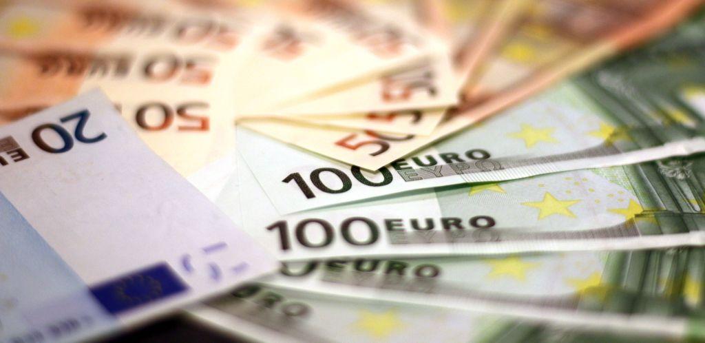 Euroja vino pino
