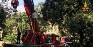 Genova, rimosso un grosso albero caduto a villa Croce, in Carignano