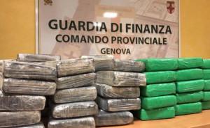 Sequestrati più di 500 chili di cocaina nel porto di Genova