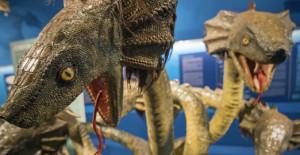 Mythos, creature fantastiche tra scienza e leggenda al Museo Doria