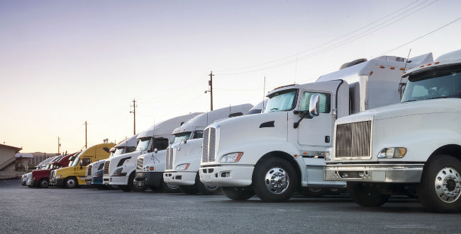 A image of white transport trucks lined up on pavement