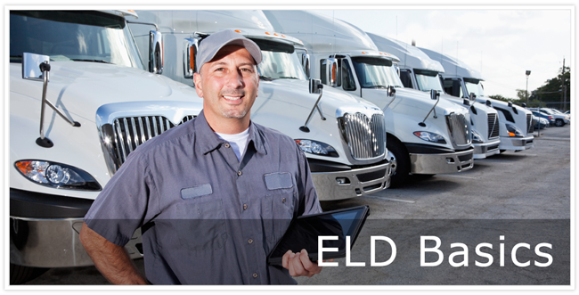 Male truck driver standing in front of a row of transport trucks