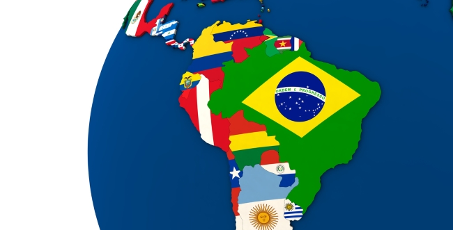 Facing the Challenges of a Global Fleet: Best Practices in Management (Latin America)