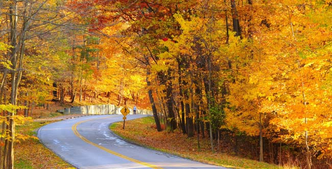 9 Must-Do Fall Foliage Drives in the U.S. and Canada