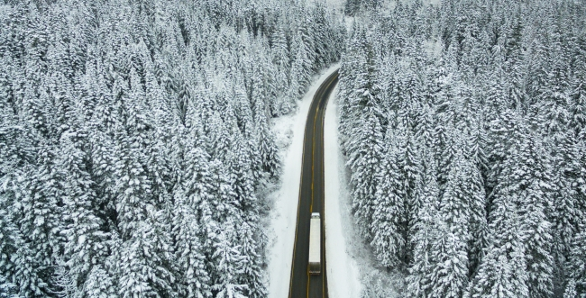 Transport truck driving on road surrounded by trees covered in snow