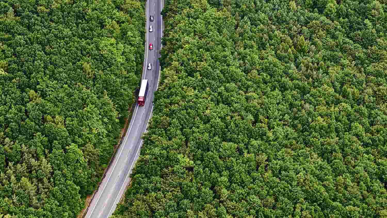 Conducción de automóviles en una carretera rodeada de frondosos bosques