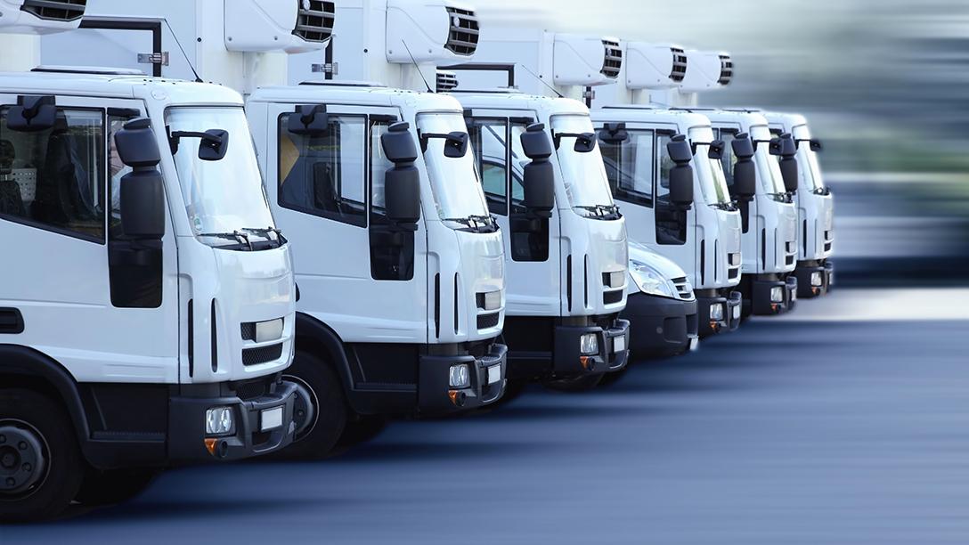 varios camiones blancos en fila