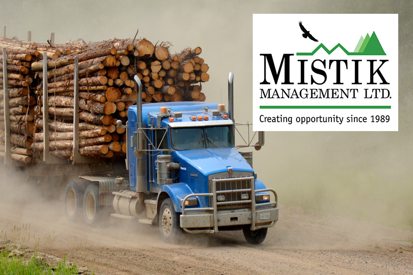 Blue truck hauling lumber along a forest road