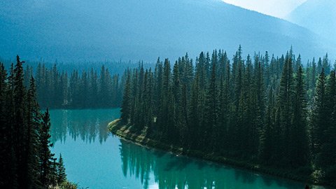 Natural Resources Canada national park forest