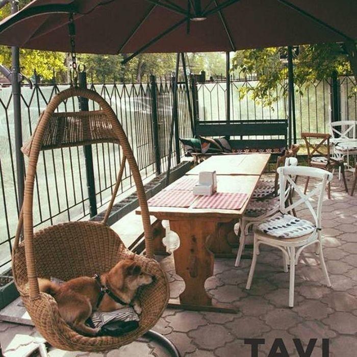 0 Фото интерьера Tavi bar
