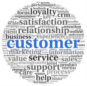 Capturing the Voice of the Customer
