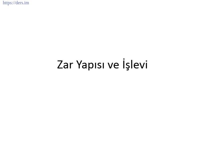 GENEL BİYOLOJİ DERS NOTLARI  -  8
