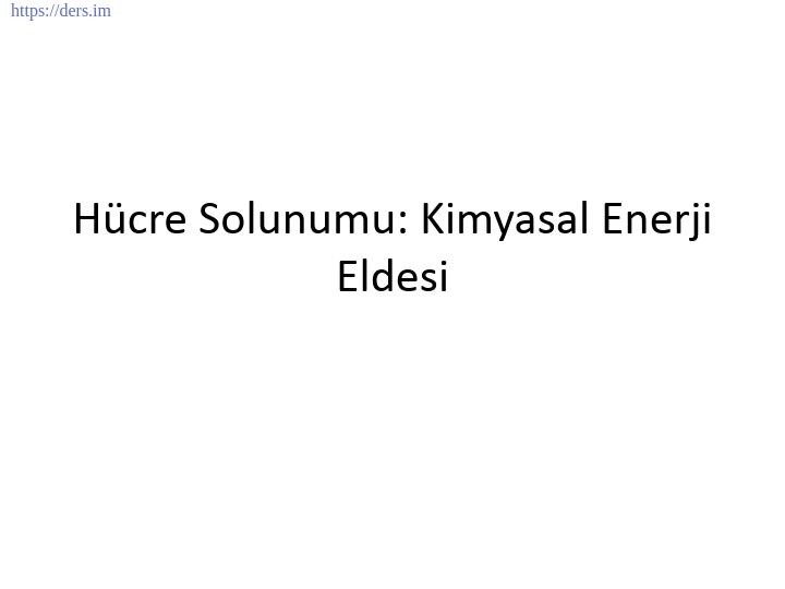 GENEL BİYOLOJİ DERS NOTLARI  -  9