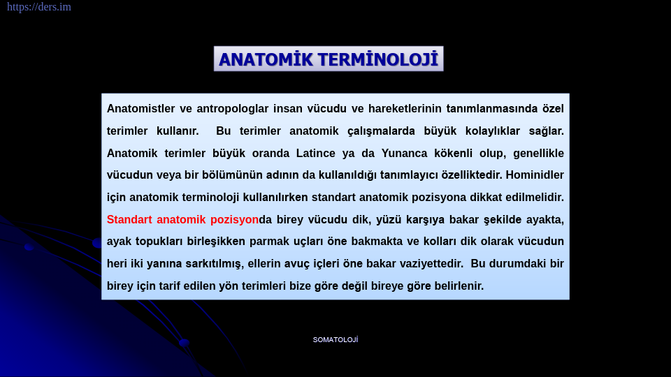 SOMATOLOJİ DERS NOTLARI - 2