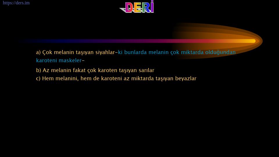 SOMATOLOJİ DERS NOTLARI - 4