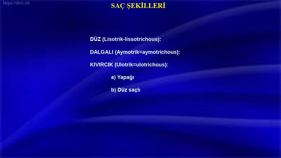 SOMATOLOJİ DERS NOTLARI - 6