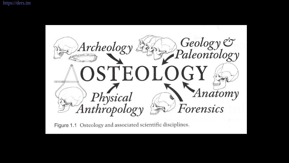 İnsan Osteolojisi Ders Notları - 1