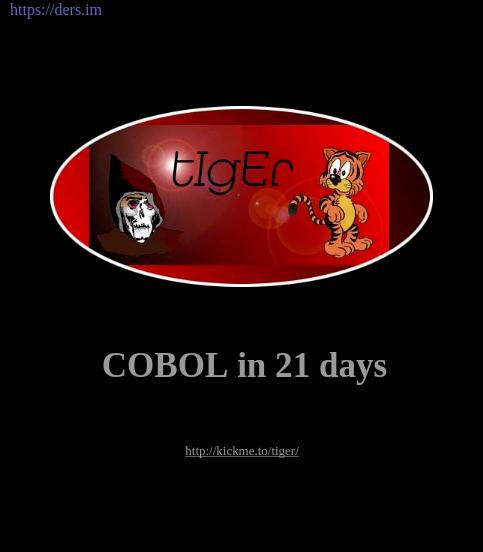 COBOL Programlamayı 21 Günde Kendin Öğren