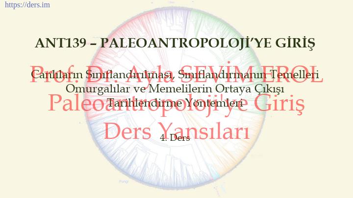 Paleoantropoloji'ye Giriş Ders Notları  -  3