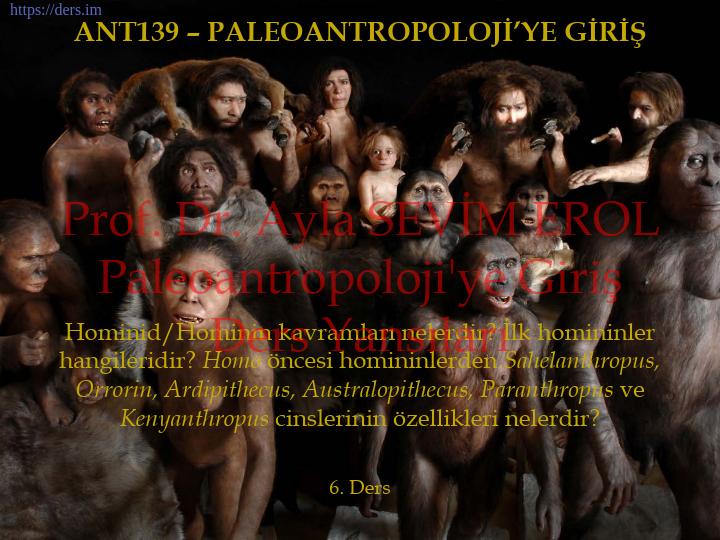 Paleoantropoloji'ye Giriş Ders Notları  -  5