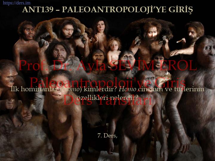 Paleoantropoloji'ye Giriş Ders Notları  -  7