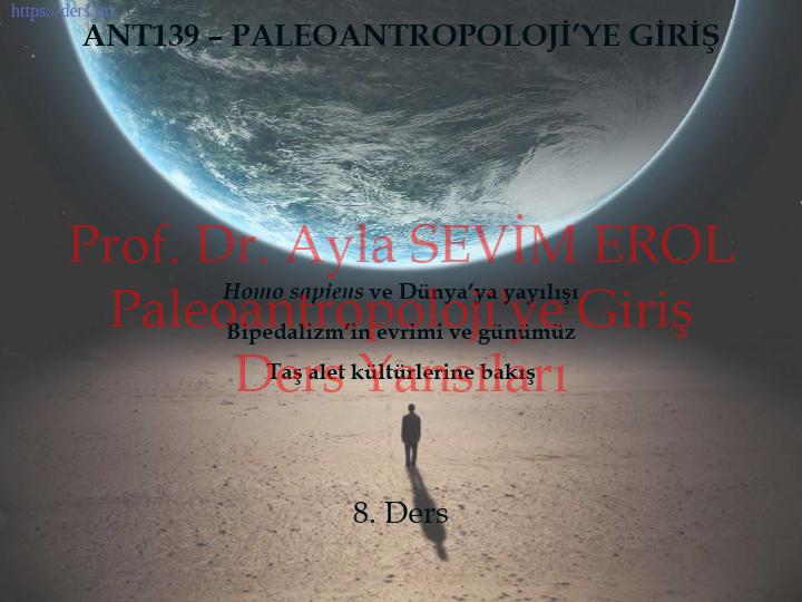 Paleoantropoloji'ye Giriş Ders Notları  -  8