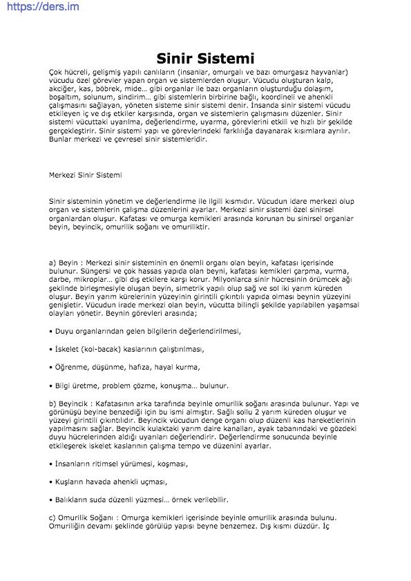 Sinir Sistemi Ders Notu - 12 Sınıf Biyoloji