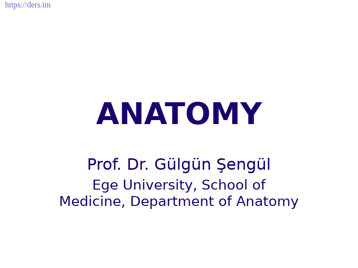 Diş Hekimliği Fakültesi / Anatomi