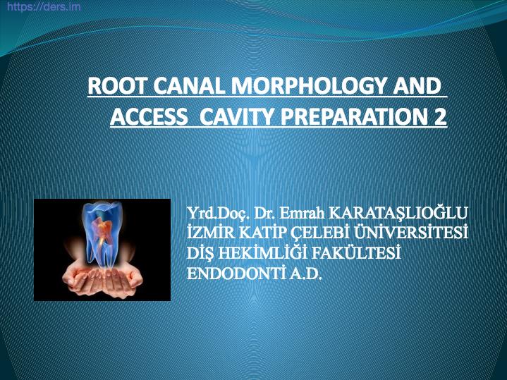 Diş Hekimliği Fakültesi / Endodonti / Kök Kanal Morfolojisi ve Giriş Boşluğu Hazırlığı Ders Notları