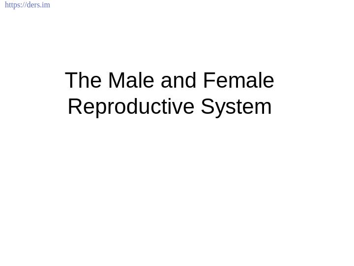 Diş Hekimliği Fakültesi / Histoloji ve Embriyoloji /  Erkek ve Kadın Üreme Sistemi Ders Notları