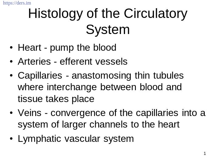 Diş Hekimliği Fakültesi / Histoloji ve Embriyoloji /  Dolaşımın Histolojisi Sistem Ders Notları
