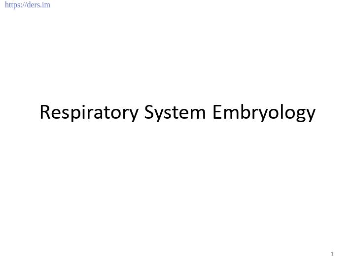 Diş Hekimliği Fakültesi / Histoloji ve Embriyoloji / Solunum Sistemi Embriyolojisi Ders Notları