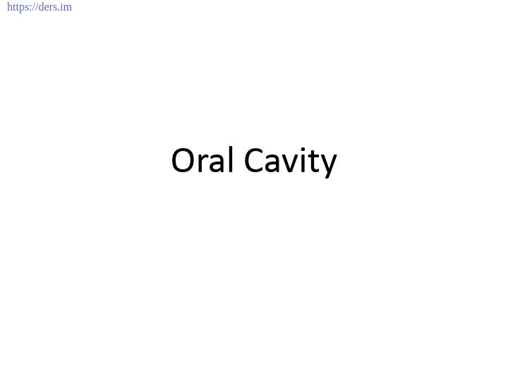 Diş Hekimliği Fakültesi / Histoloji ve Embriyoloji / Ağız Boşluğu Ders Notları