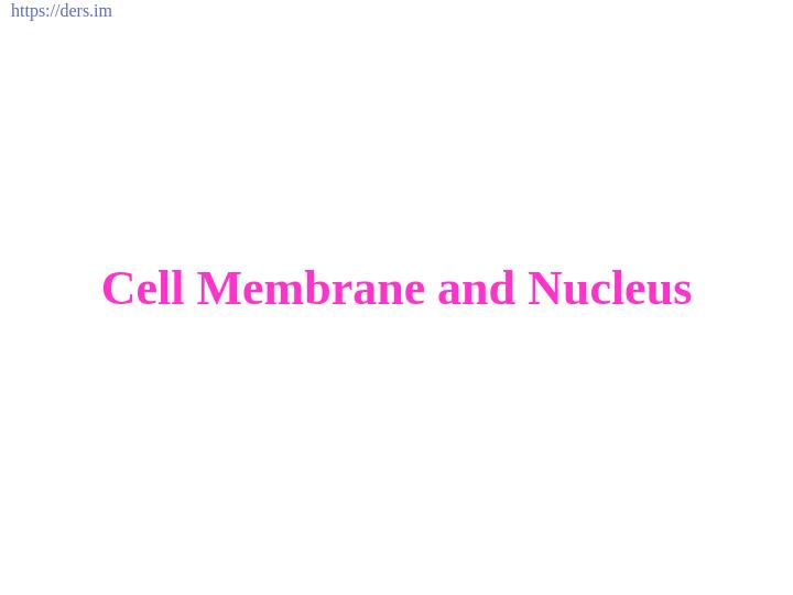 Diş Hekimliği Fakültesi / Histoloji ve Embriyoloji /  Hücre Zarı ve Çekirdek Ders Notları