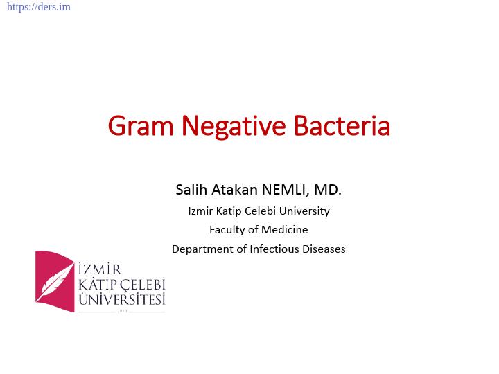 Diş Hekimliği Fakültesi / Mikrobiyoloji /  Gram Negatif Bakteriler Ders Notları