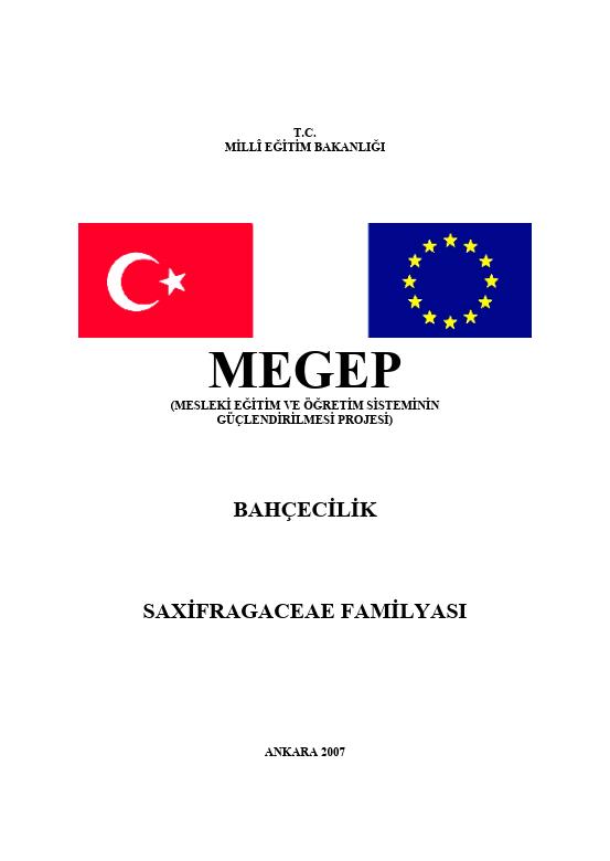 Saxifragaceae Familyası