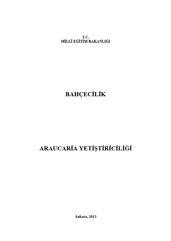 Araucaria Yetiştiriciliği