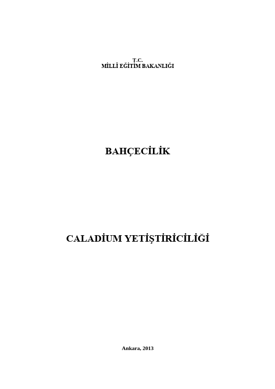 Caladium Yetiştiriciliği