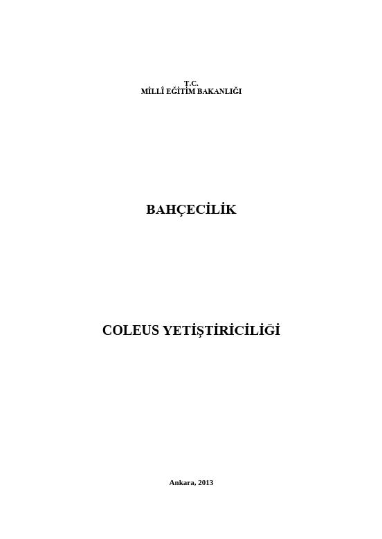 Coleus Yetiştiriciliği