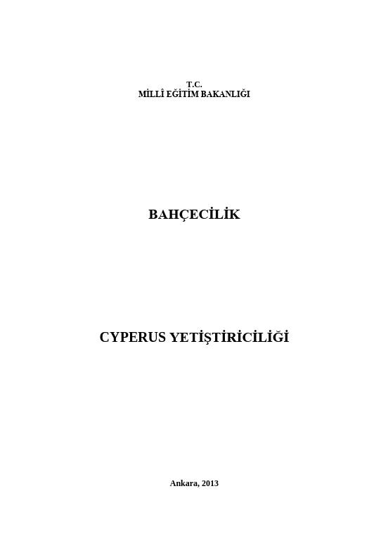 Cyperus Yetiştiriciliği
