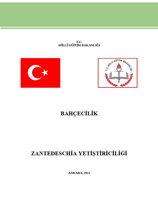 Zantedeschia Yetiştiriciliği ders notu pdf